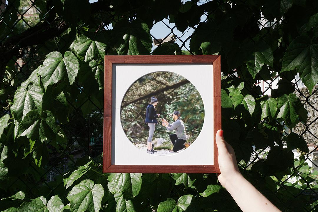 camber frame