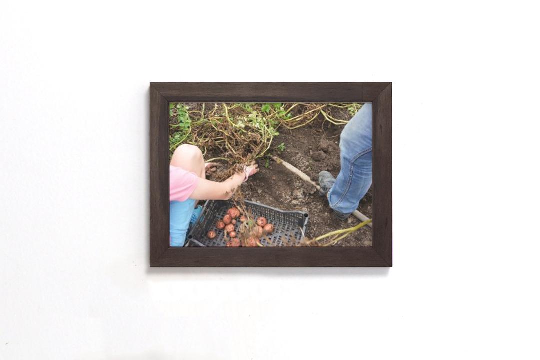 perth frame