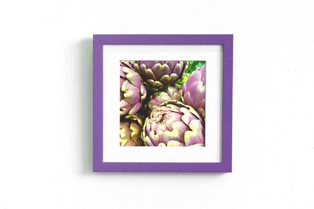 jaunt frame